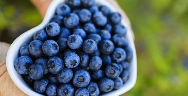 blauwe bosbessen goed om bloeddruk te verlagen